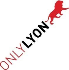 ONLYLYON - Lyon, la Ville pour Vivre, Etudier & Travailler en France | L3 Séance 2 Attractivité et Marketing territorial | Scoop.it
