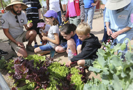 Tucson Village Farm teaches kids, families advantage of natural, healthy eating | Arizona Daily Star | CALS in the News | Scoop.it