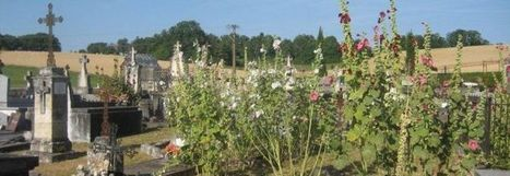 Portail Santé Environnement » Dordogne : 120 collectivités ont déjà signé la Charte Zéro Herbicide | Les colocs du jardin | Scoop.it