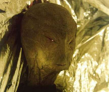 Second Witness Confirms Reptilian Alien Sighting In Colorado! | Strange | Weird Phenomena | Scoop.it