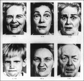 Are Facial Expressions Universal?   Growing To Be A Better Communicator   Scoop.it