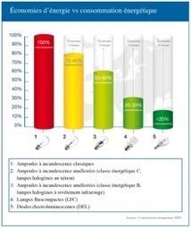 Des ampoules classiques aux leds : 80% d'économie d'énergie   ista blog   Les-materiaux-ecologiques.fr   Scoop.it