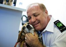 New rule would require more airlines to report on lost, injured pets   Pet News   Scoop.it