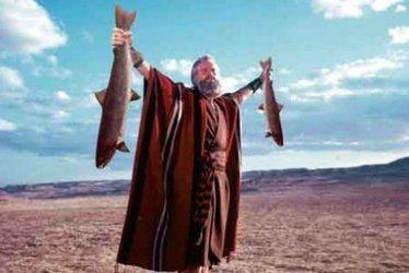 Vos cinq piliers pour un poisson durable - Terra eco | Foodfighters | Scoop.it