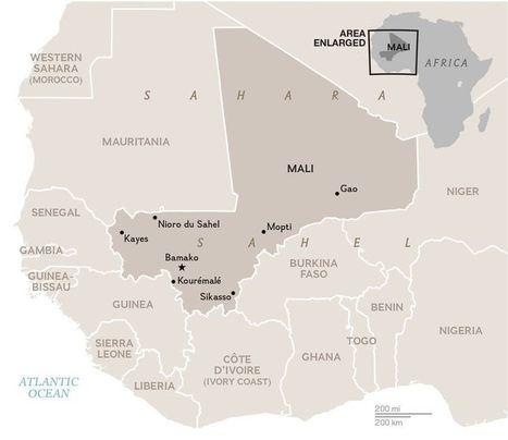 Ebola Strikes Mali Just as Vaccination Effort Gets Under Way | Virology News | Scoop.it