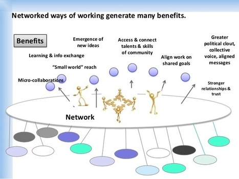 Flisrand Consulting » The Basics of a Network Approach | Random Overlaps | Scoop.it