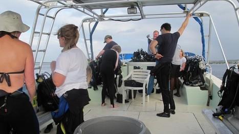 The Five Worst Annoying Habits In Scuba Diving - Scuba Diver Life | DiverSync | Scoop.it
