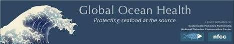 Seafood industry under threat from climate change and ocean acidification – global reduction of CO2 emissions required to safeguard future | Aquaculture Directory | FOOD TECHNOLOGY  NEWS | Scoop.it