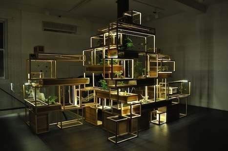 """The Internet of Plants: What These Smart Terrariums Can Tell us About Building Cities 