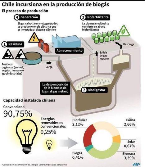 CHILE INCURSIONA EN LA PRODUCCION DE BIOGAS | Agricultura y Ganaderia | Scoop.it