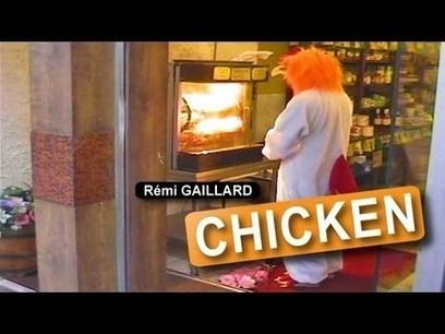 Chicken Funeral (Rémi GAILLARD)   Extra Income   Scoop.it