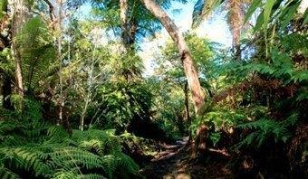 La Réunion : quelques conseils pour bien voyager | carnet de voyage | Scoop.it