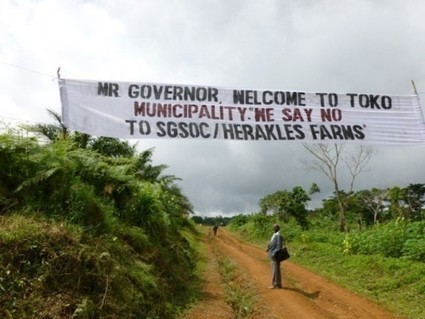 Cameroun. L'Université de Dschang épingle le projet d'Herakles ... | Cameroun Tourisme, cultures et nature | Scoop.it