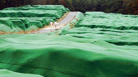 Fukushima : le Japon a choisi d'incinérer des tonnes de déchets radioactifs - le Figaro | Actualités écologie | Scoop.it