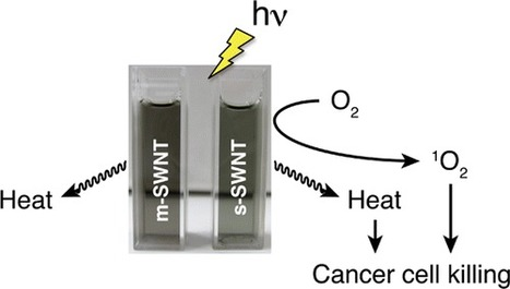 Photodynamic and Photothermal Effects of Semiconducting and Metallic-Enriched Single-Walled Carbon Nanotubes - Journal of the American Chemical Society (ACS Publications) | Medical Engineering = MEDINEERING | Scoop.it