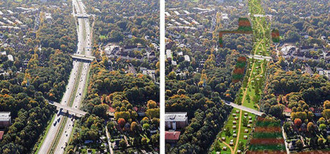 Hamburg Aims To Be Car-Free In 20 Years | green streets | Scoop.it