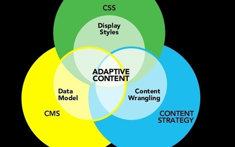 Defining and Understanding Adaptive Content - Page 2 | The Write Stuff | Scoop.it