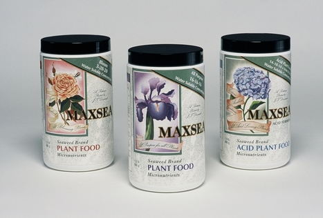 MAXSEA - Soluble Seaweed Plant Foods - 24 ounces will make 60 gallons | Anchors Sales Company - Portfolio | Scoop.it