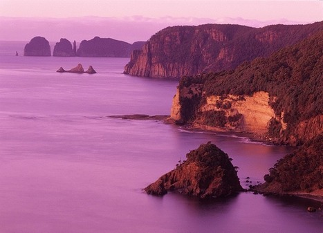 Conservationists promote tourism initiative on ... - Tasmanian Times | HashtagHobart | Scoop.it