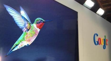 "Google Hummingbird, l'algoritmo sostituito ""in silenzio"" | Tech Moleskine | Scoop.it"