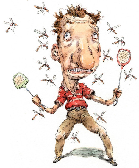 Why Certain People Attract Mosquitos | Reader's Digest | PCOS or Polycystic Ovarian Syndrome Awareness | Scoop.it