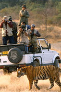 Rajasthan Tour Packages | Tour Operator India | Scoop.it