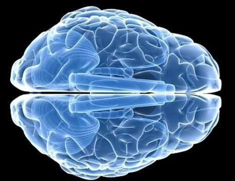 La deficiencia de vitamina E puede dañar el cerebro | LOS 40 SON NUESTROS | Scoop.it