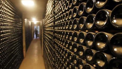 Vin: la biodynamie au service de la planète | Cavissima - Actualité vin | Scoop.it