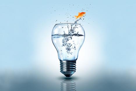 Beyond Business as Usual | Suited Monk Leadership | Scoop.it