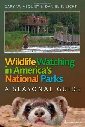 Wildlife Watching In America's National Parks | Outdoors Curated | Scoop.it