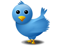 5 things they never tell Twitter newbies, but should | Best of Tweet Smarter | Scoop.it