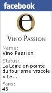 Oenotourisme _Les meilleures alliances mets et vins avec Vino Passion | Oenologie | Scoop.it
