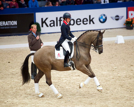 One-On-One with Carl Hester | Dressage Today | Equine massage | Scoop.it