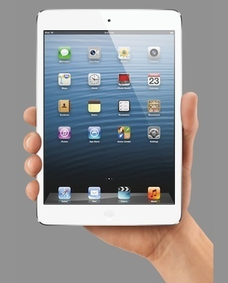 Will Physicians Embrace the iPad Mini? | The Patient Experience | Scoop.it