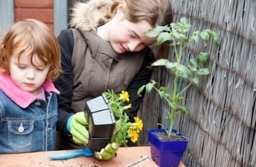 Gardening 4 Kids - gardening products and ideas for children and school gardens - gloves, tools, organic seeds, books   Educating students_Focus on Food Forever   Scoop.it
