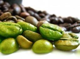 please click | Coffee Bean | Scoop.it