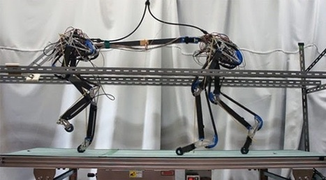 Air-powered leopard robot doesn't need a complex brain to walk | Tracktec | Tracktec | Scoop.it