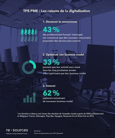 TPE-PME: la digitalisation ou la mort   Web Marketing   Scoop.it