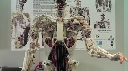 World's First Robot With Artificial Human Bones And Muscles | Robots and Robotics | Scoop.it