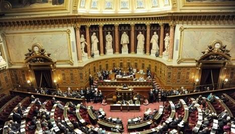 Le Sénat basculera à droite en septembre... et ce sera une victoire pour la gauche !   pachou39   Scoop.it