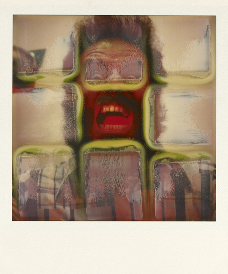 The Polaroid Was Instantaneous. See How Artists Made It Eternal At The Vassar Art Museum. | Polaroid | Scoop.it