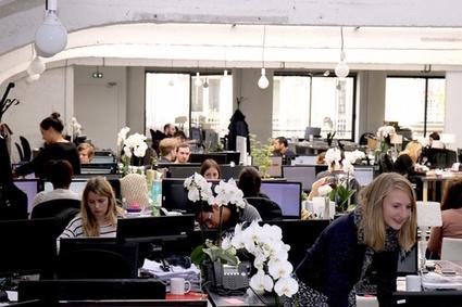 Welcome to the Jungle - Travaillez dans la tribu qui vous correspond | Marque Employeurs | Scoop.it
