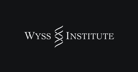 News | Wyss Institute | SynBioFromLeukipposInstitute | Scoop.it