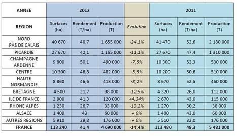 UNPT   Production > Production française   la pomme de terre du nord pas de calais   Scoop.it