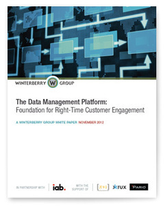 The Data Management Platform: Foundation for Right-Time Customer Engagement | BI Data Analyst IS | Scoop.it