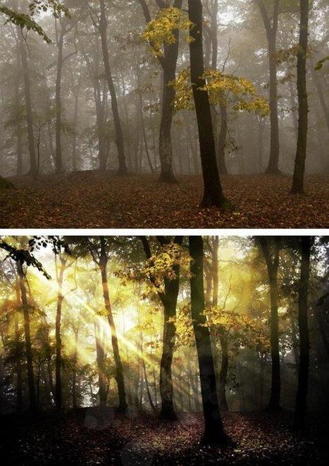Best Photoshop Tutorials of December 2011 | photoshop ressources | Scoop.it