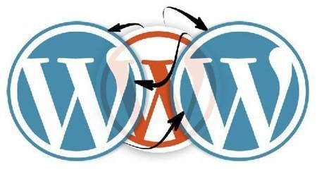 15 choses à faire lorsque vous changez de thèmes WordPress   tous les CMS   Scoop.it