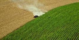 Food Politics: The World can't be Just a Huge Supermarket   NewsClick   Agriculture : économie et développement.   Scoop.it