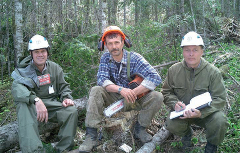 Russian Far East temperate forests |SA Forestry Magazine | Temperal Forest | Scoop.it