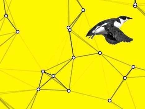 Big Data Is Saving This Little Bird - FiveThirtyEight | Big Data in Manufacturing Today | Scoop.it